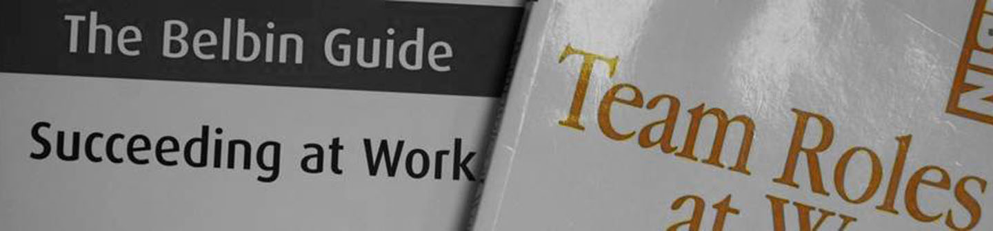 the belbin guide to succeeding at work belbin